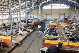 Szybkomontowane gmachy Ruukki dla rolnictwa