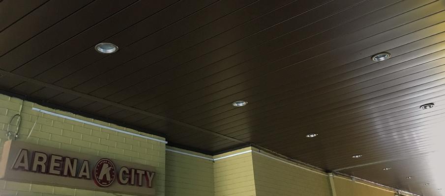 Arena City